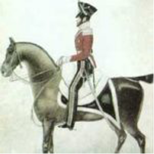 A person riding a horse  Description automatically generated with medium confidence